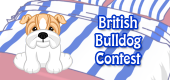 british bulldog contest