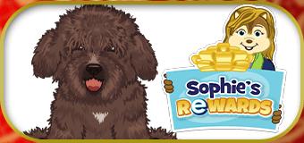 New Sophie's Rewards for 2021!