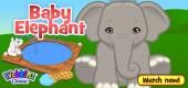 baby_elephant_video