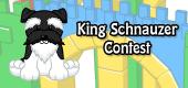 king schnauzer contest