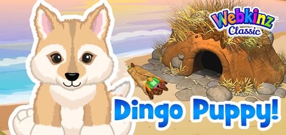 The Dingo Puppy arrives in Webkinz World!