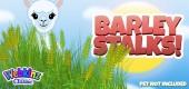 `barley_stalks_feature